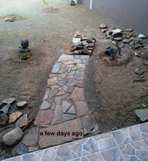 blog front yard 1