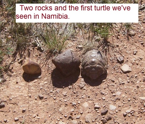B 3 rocks