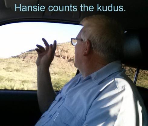 b Kudu counting
