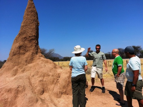 Lombard explains to Barbara, Dave and Oren that Termite City is actually below ground level!