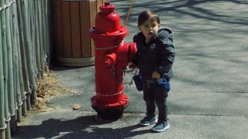 !Adin at Zoo (11)
